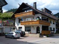 Ferienwohnung Haus Sitsch in Bad Rippoldsau-Schapbach - kleines Detailbild