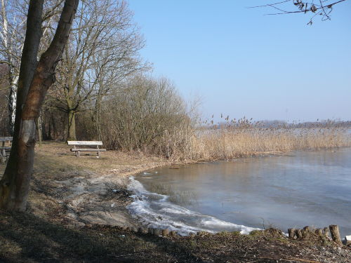 Winter am Woblitzsee