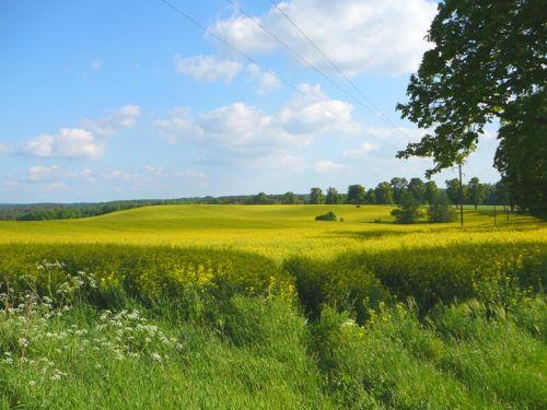 Mecklenburg im Mai
