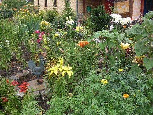 Garten mit Lilien