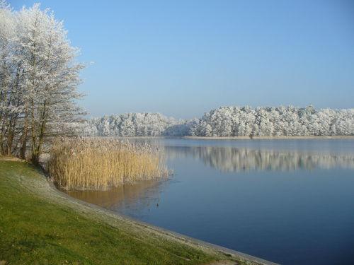 Winter am Lübbesee