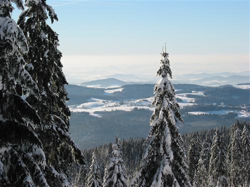 Winterliche Landschaft - Ausblick Haidl