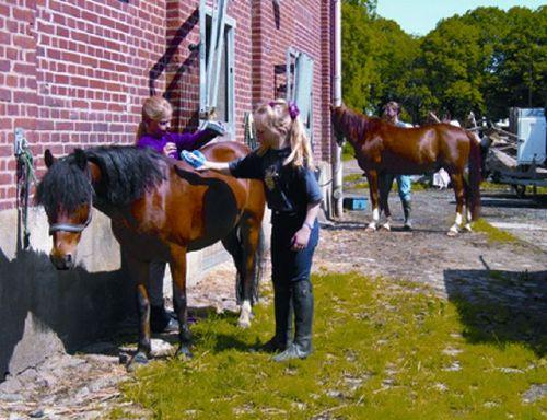 Vor dem Ponyreiten