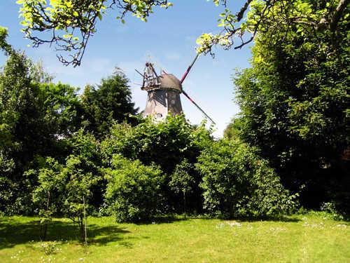 700 qm Garten mit Blick auf die Mühle