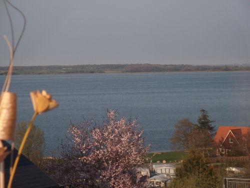 Panorama-Ausblick aus Whg. u. vom Balkon