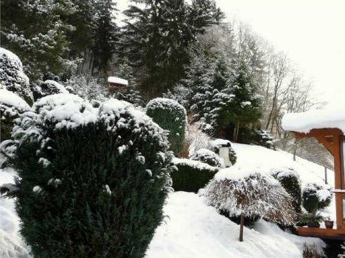 Winteransicht vom Ferienhaus