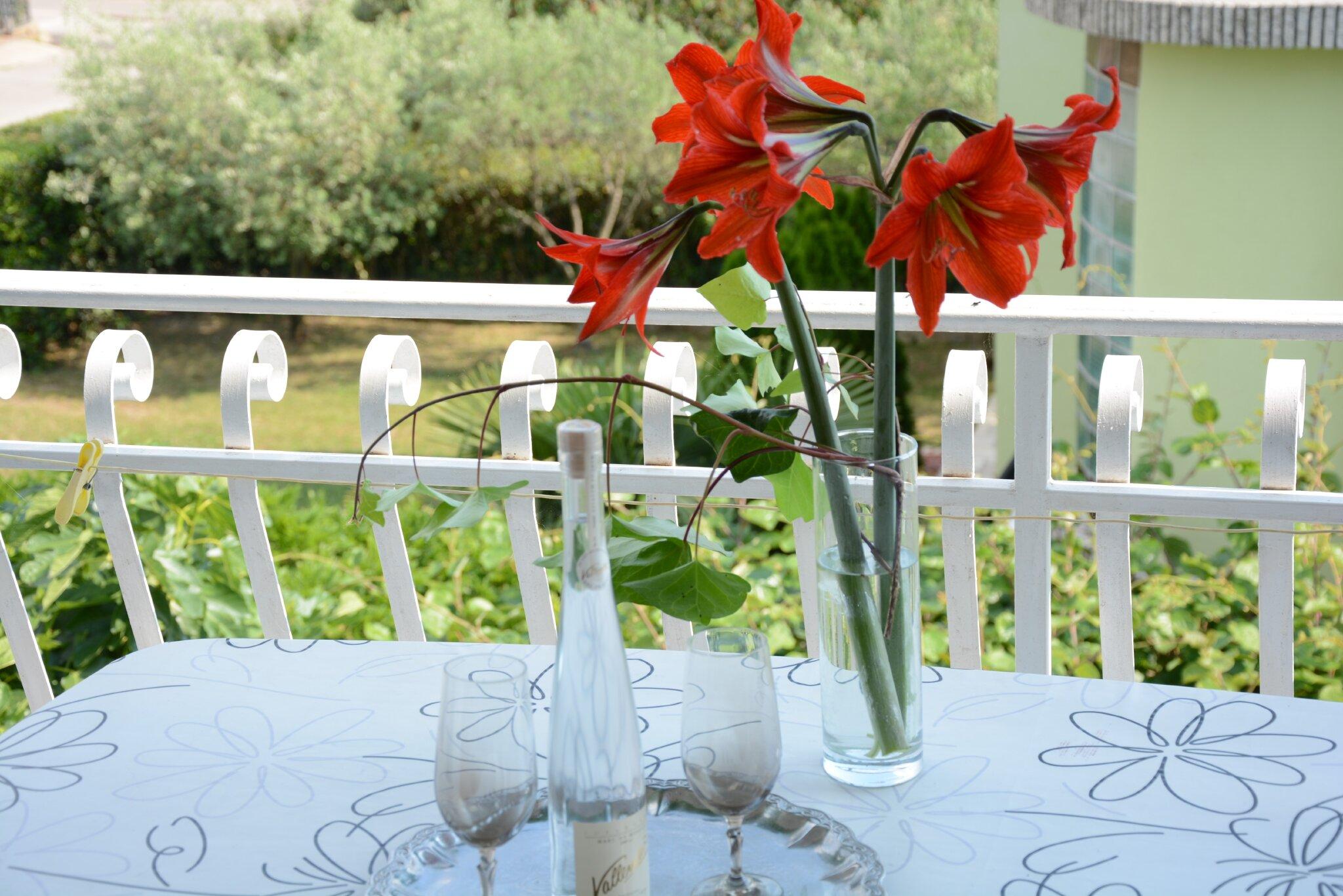 Garten vor Haus