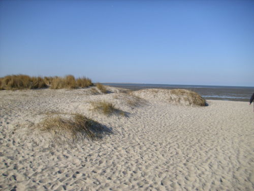 ...durch die Dünen zum Strand