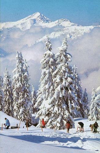 Winterlandschaft Bad Reichenhall