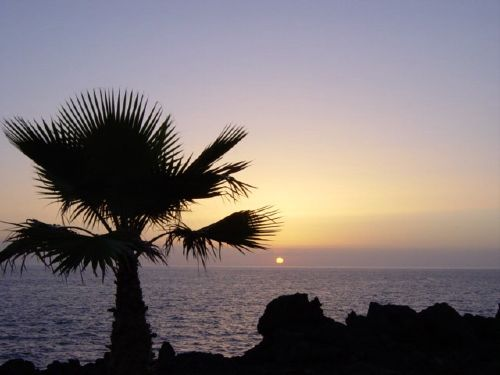 Umgebung von Sonnenstudio Playa San Juan