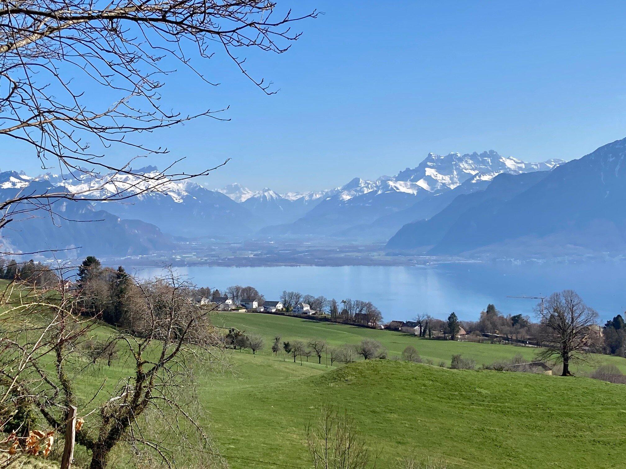 Rizzli-Alp oberhalb des Chalet Barbara