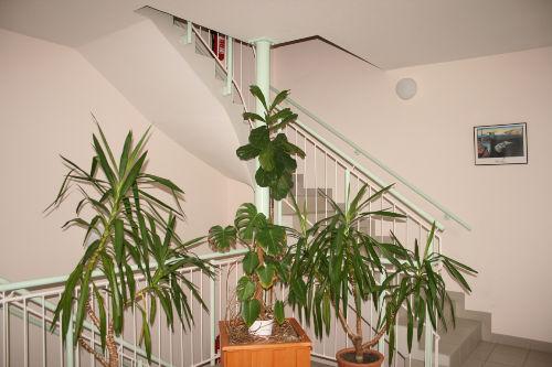 Der Empfangsbereich im Erdgeschoss