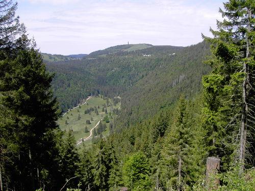 Blick zum Feldberg