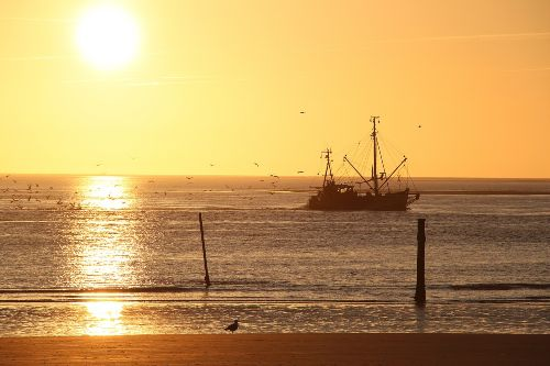Krabbenkutter vor Norderney