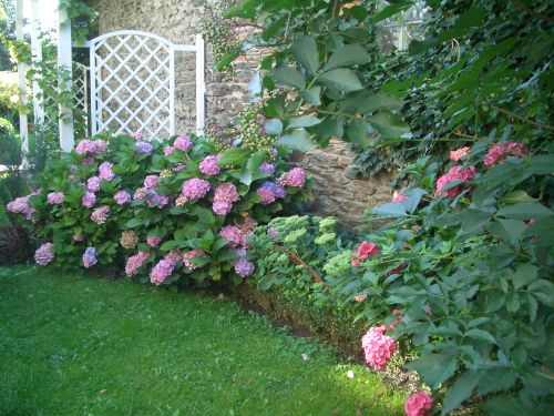 Eine Ecke des Gartens