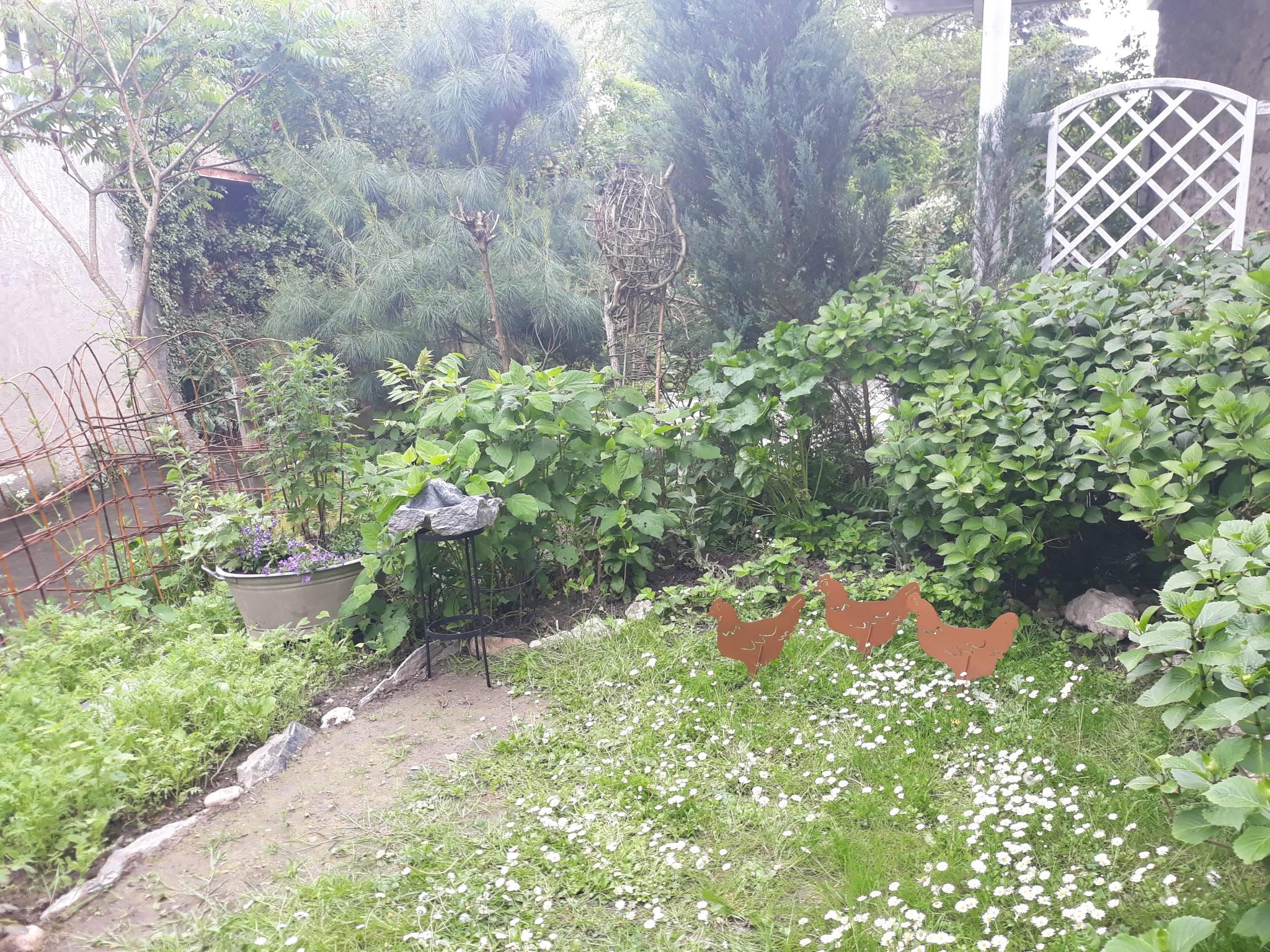 Sommerbepflanzung an der Bachseite