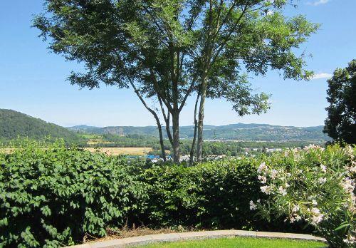 Blick von der Fewo ins Rheintal