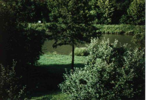 Blick zum Neckar