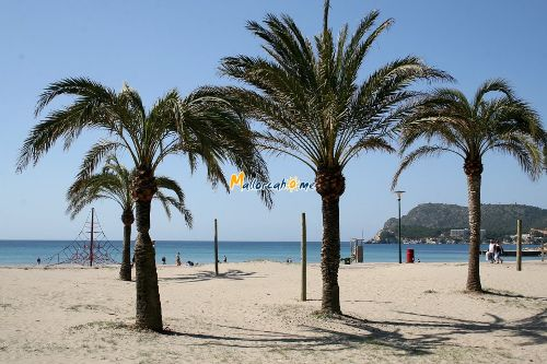 Strand in Paguera