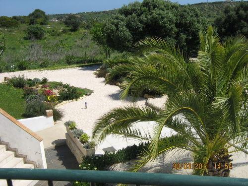 Garten - Hintergrund Golfplatz Boa Vista