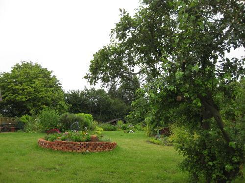 Blumenschnecke im Garten