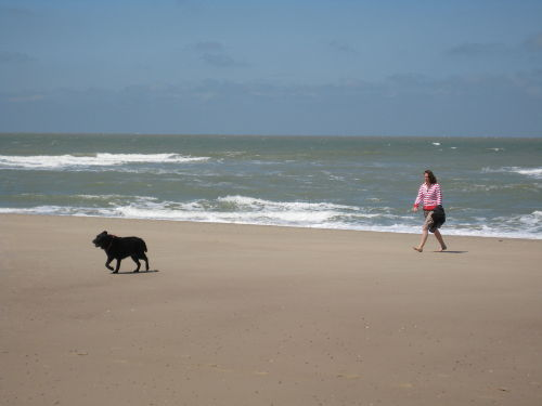 Strand und Meer; für alle Jahreszeiten