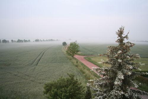 Ausblicke - Morgennebel