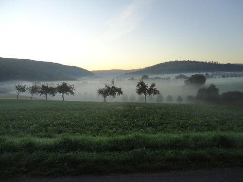 Morgendlicher Blick ins Pyrmonter Tal