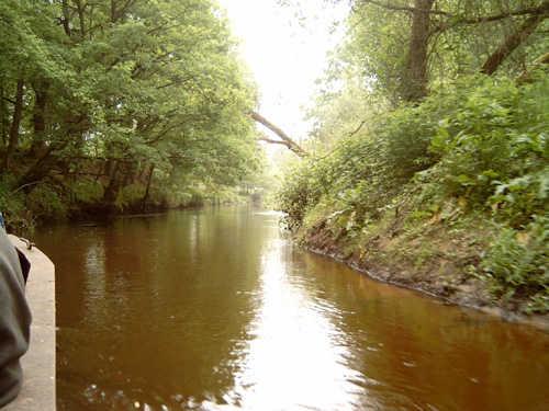 Die Oste für Angler, Boot und Kanufahrt
