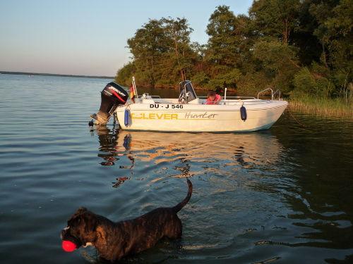 Bootstour mit Hund