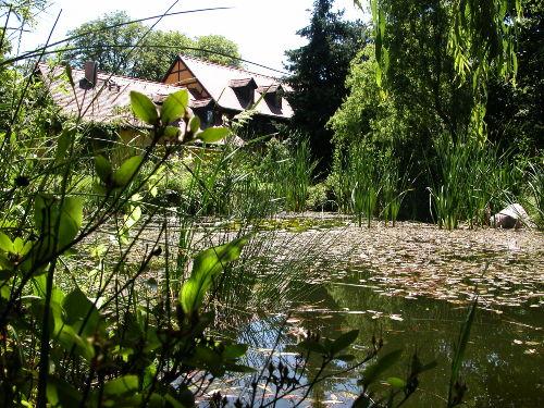 verträumter Gartenteich- Blick zur Fewo
