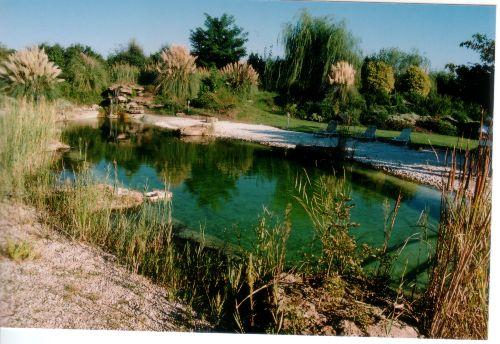 Badesee im Park von POGGIOROTA