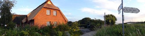 Naturschutzgebiet Geltinger Birk 400m