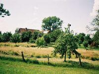 Ferienhaus 'Zum Storchennest' in Wilkenstorf-Raffatz - kleines Detailbild
