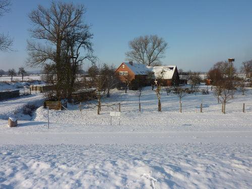 Winterstimmung an der Elbe