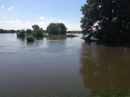 Hochwasser im Deichvorland 2013