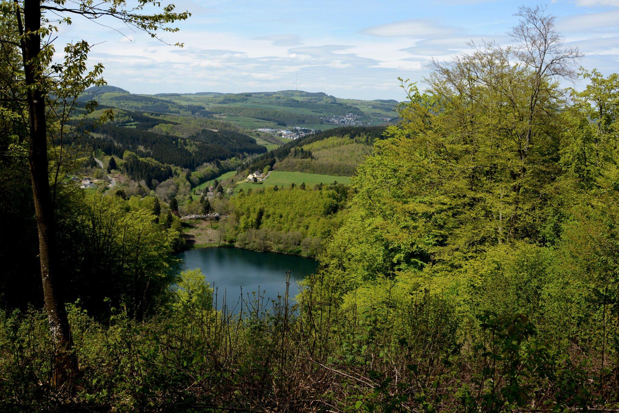 Das Maar - See bei Schalkenmehren