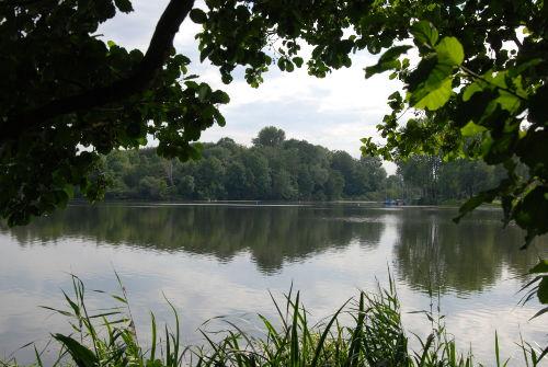De Wittsee nur 5 Minuten entfernt