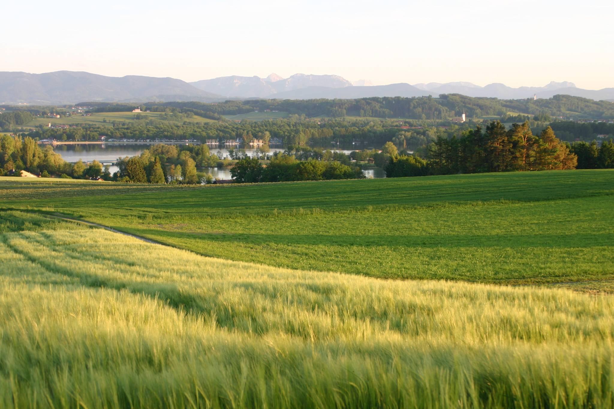 Blick vom Mühlberg