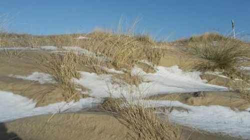 Winter auf Amrum