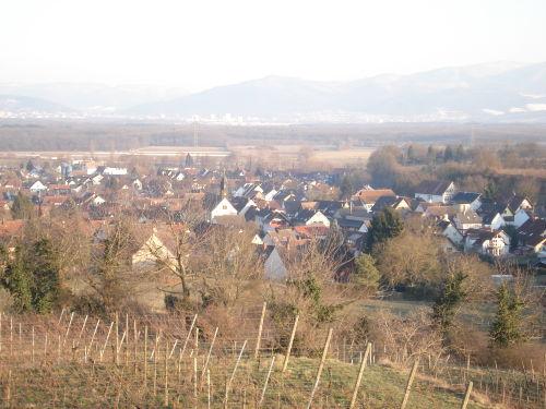 Waltershofen