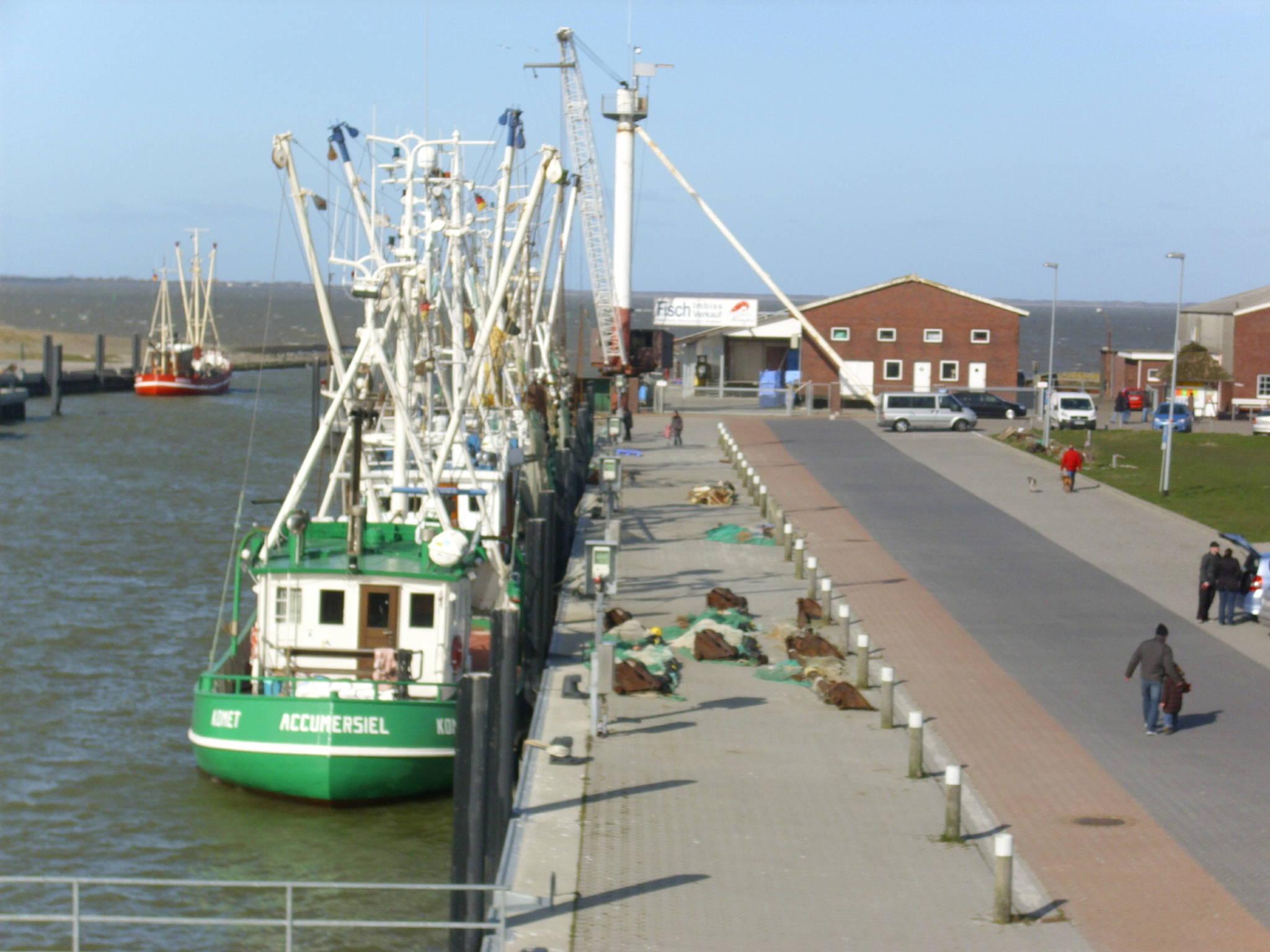 Fischereihafen Dornumersiel/Accumersiel