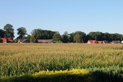 Ruhige Umgebung und Landschaft