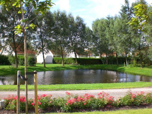 Teich vor dem Haus
