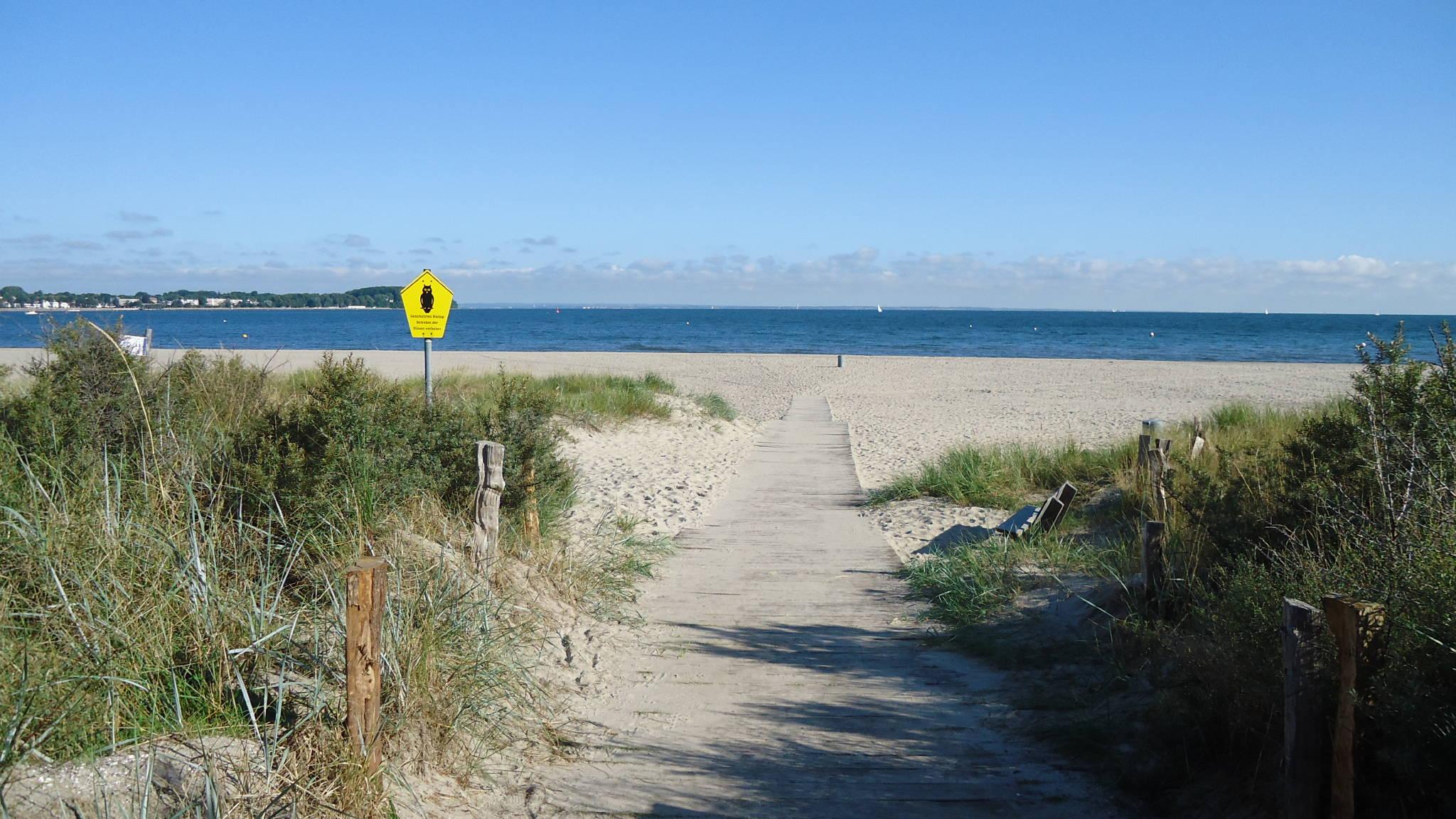 Garten mit Grillterrasse