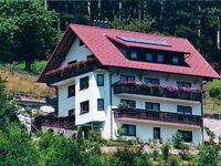 Haus Panoramablick - Ferienwohnung 1 in Bad Peterstal-Griesbach - kleines Detailbild