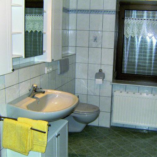 Sanitärbereich (Dusche/WC)