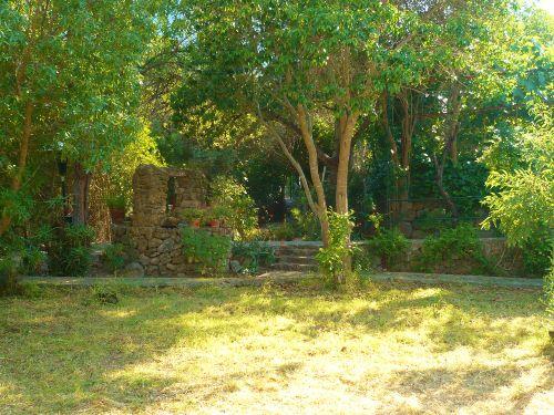 Blick im Sommer vom Garten zum Ausgang