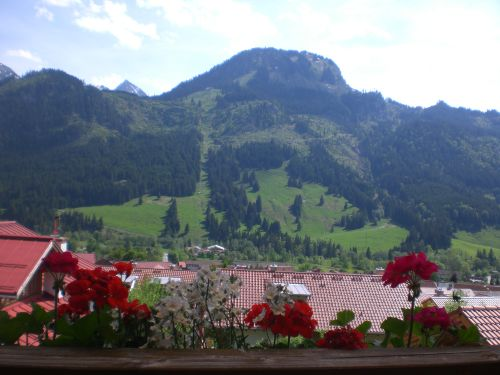 Bergblick - Hornbahn
