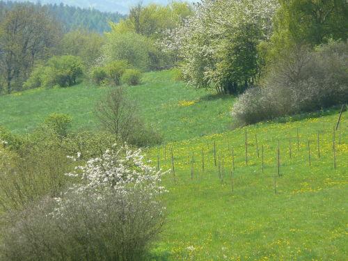 Bilderbuch-Landschaft
